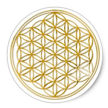 Deze Flower of Life sticker heeft een transparante ondergrond. De flower of life staat voor het eenheidsbewustzijn en werkt activerend, vitaliserend en regenererend. De stickers worden op een vel van 6 stuks geleverd. De afmeting is 3,8 cm.Shungite Nederland
