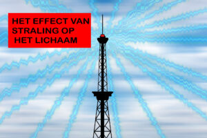 Straling Shungite Nederland